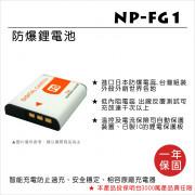 FOR SONY NP-FG1 電池 HX5V HX9HX7V WX1 H90 W270